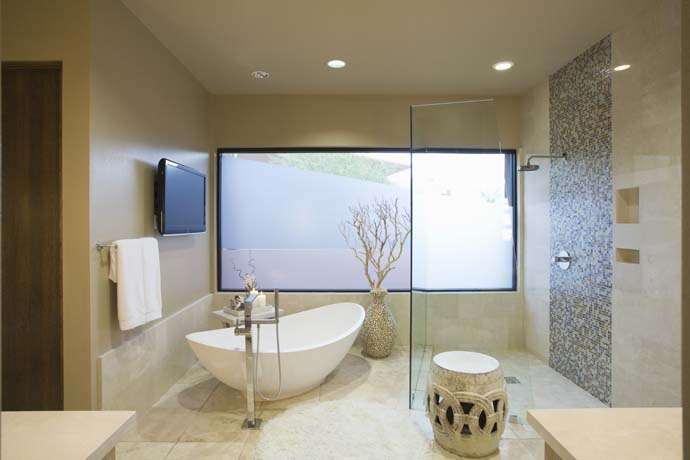 Spacious Bathroom Design And Layout